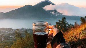 mount batur coffee plantation