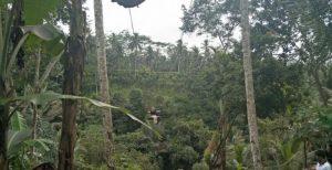 Mount Batur Sunrise Trekking and Swing